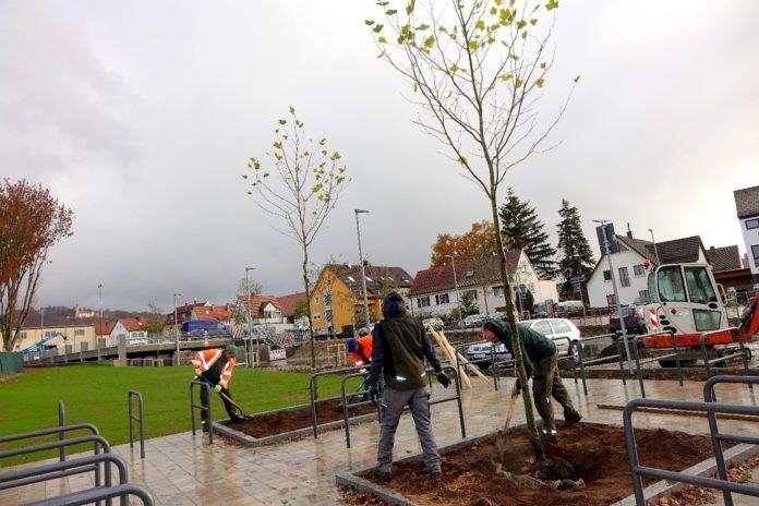 Stadt pflanzt rund 3.900 Bäume und Pflanzen